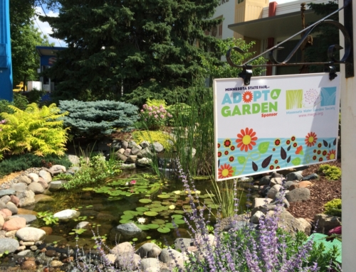 MWGS Water Garden at MN State Fair August 22 – September 2